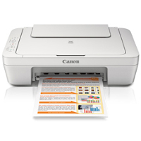 Canon PIXMA MG2520 printing supplies