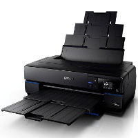 Epson SureColor P800 printing supplies