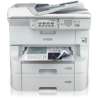 Epson WorkForce Pro WF-8590 DTWF printing supplies