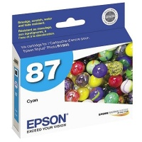 Epson T087220 InkJet Cartridge