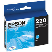 Epson T220220 InkJet Cartridge